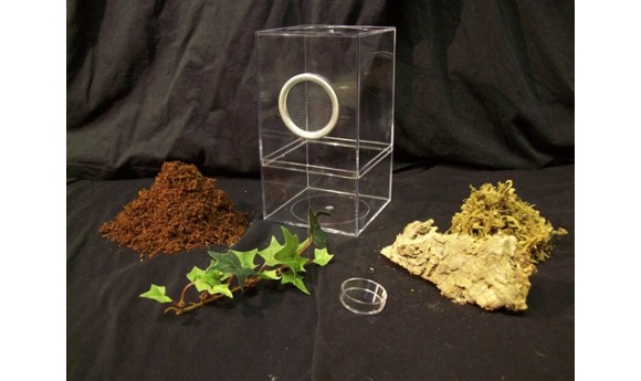 Arboreal Juvenile Enclosure Kit