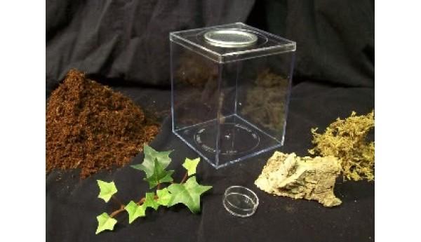Terrestrial Juvenile Enclosure Kit