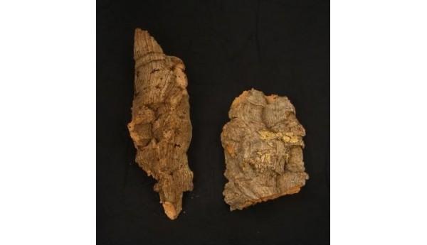 "Cork Bark Flat Small 5"""