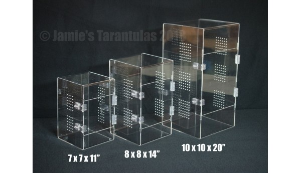 "10 x 10 x 20"" Adult Tarantula Cage - Cage Only"