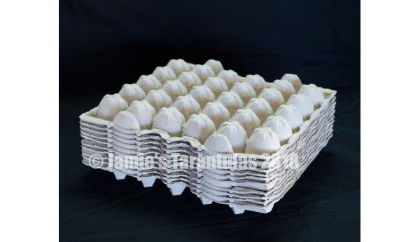 Egg crate 10 flats FREE SHIPPING
