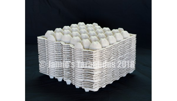 Egg crate 20 flats FREE SHIPPING