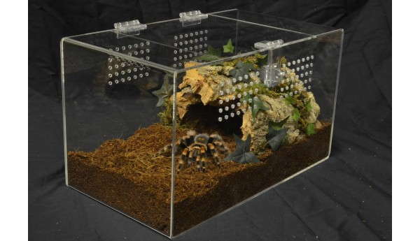 Adult Tarantula Cage - Complete Terrestrial - Double Hasp